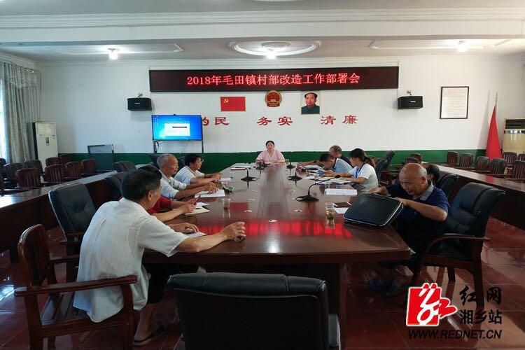 毛田镇:多部门联动推进村级综合服务平台改造