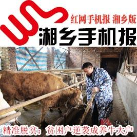 2月17日湘乡手机报