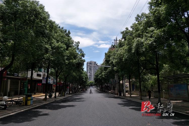 【重点项目建设】健康路16日通车 提质了哪些地方?