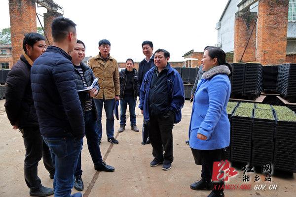 新华社湖南分社总编辑张春保来湘乡采访