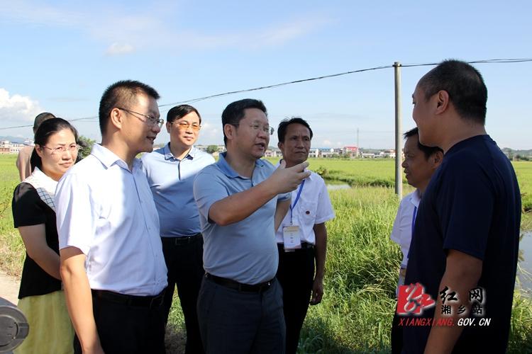 赵文彬来湘乡调研土地流转、灾后建设等工作
