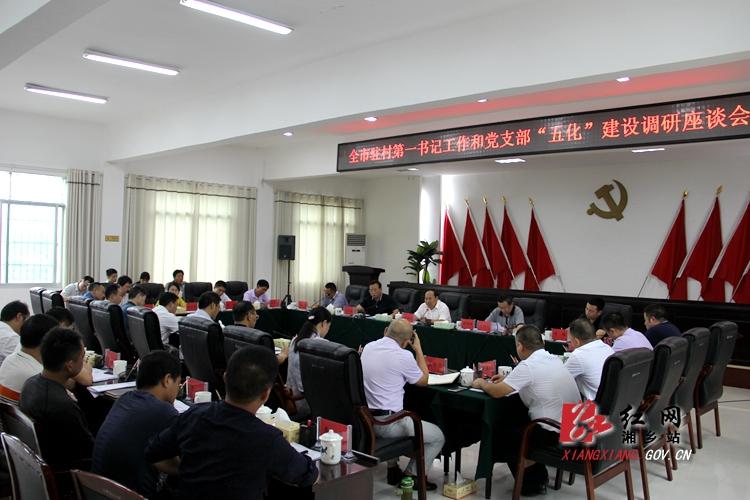 廖桂生来湘乡调研指导驻村第一书记工作