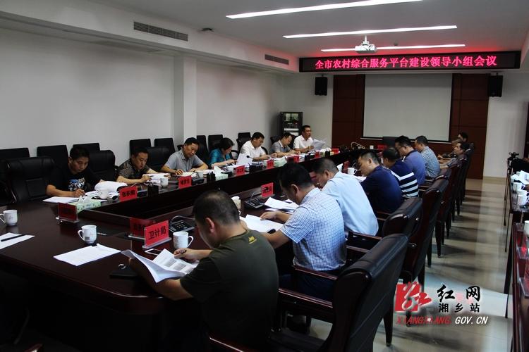 农村综合服务平台建设领导小组会议:10