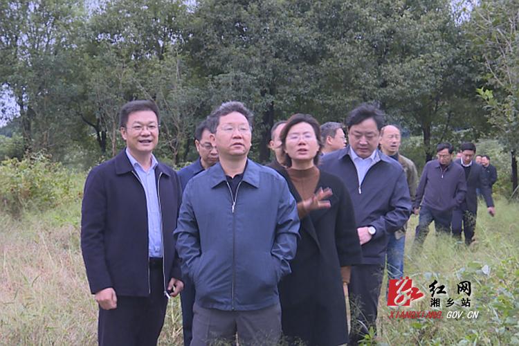 赵文彬到白田镇调研现代农业综合示范园建设