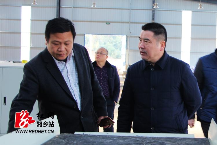 彭初阳视察金石工业园建设情况