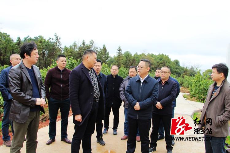 彭瑞林现场办公推进泉塘现代农业示范园建设