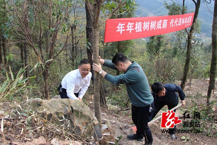 美丽龙城添新绿 彭瑞林等市领导带头在东台山义务植树