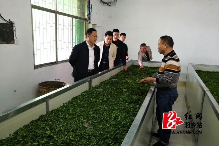彭瑞林赴毛田镇调研乡村振兴战略实施情况