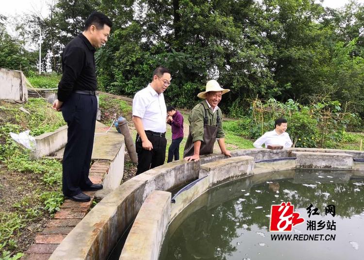 彭瑞林调研泉塘现代农业示范园建设