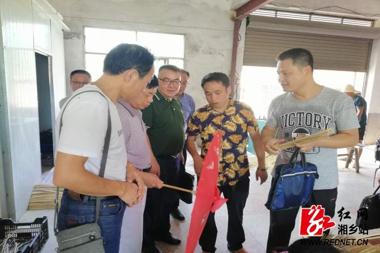 杨真平赴巴江村现场办公 指导乡村振兴发