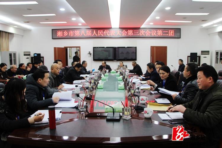 彭瑞林参加第二代表团审议人大、法院、检察院工作报告