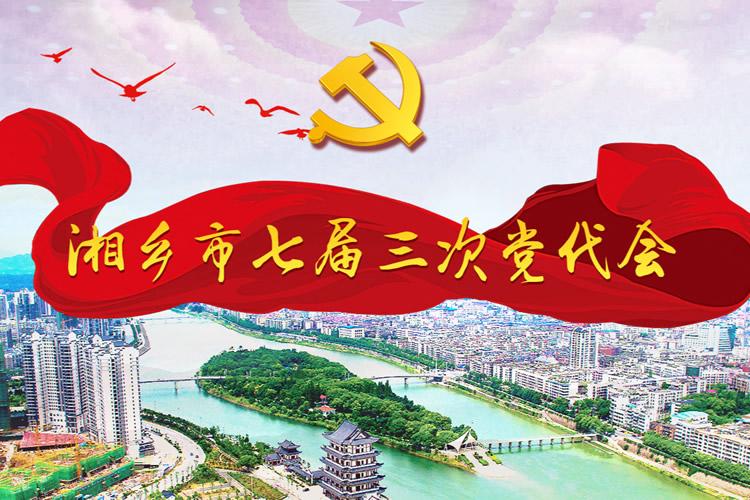 中国共产党湘乡市第七届代表大会第三次会议
